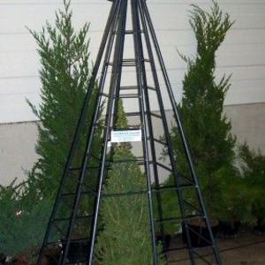 10. Obelisk